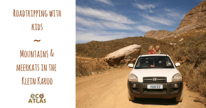 roadtripping-with-kids