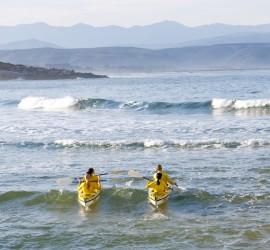 eco tourism plett south africa