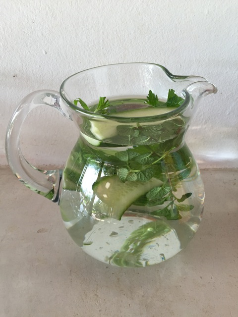 Waste Free Tip 8: Rater drink tap water (filtered if you wish) than water from plastic bottles. You can flavour it with all sorts of fresh and delicious herbs and fruits.