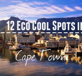 eco atlas travel blog cape town